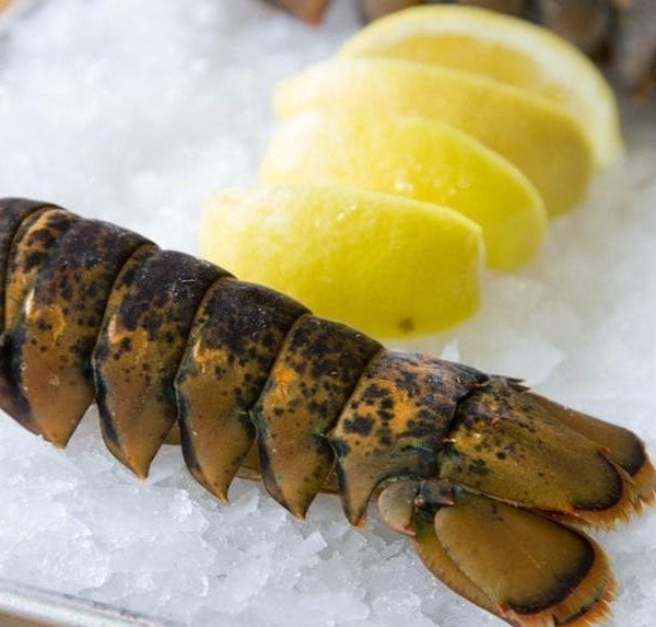 lobstertails